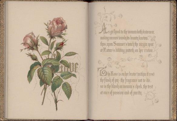 20140214 [love poem]